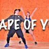 shape of you ed sheeran vs sandero feat annie pattison remix mashup free download