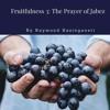 Fruitfulness 3: The Prayer Of Jabez by Raymond Kasinganeti