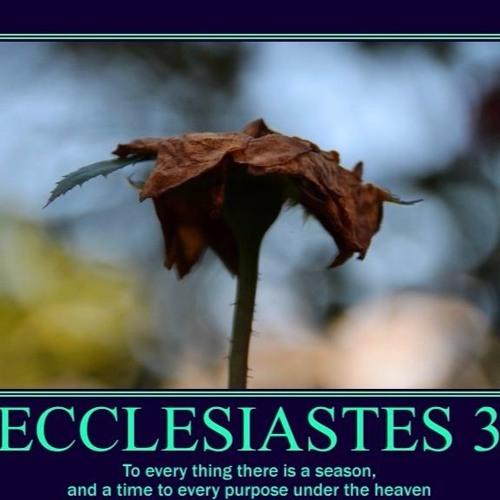 2017 02 05 Ecclesiastes 12 1 - 8