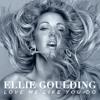 Owl City, Ellie Goulding, Bridgett Mendler - Love Me Like Alligator Hurricane Sky (DJ Baylazz Mash)