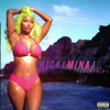 P!nk & Nicki Minaj - Raise Your Starships (DJ Baylazz Mash-up)