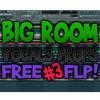 FREE BIG ROOM VOCALS DROPS 3! (FLP + SAMPLES)
