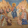 Sermon On The Mount III - Restoring The Purity Of Our Origins In Christ - Fr. Michael Flowers