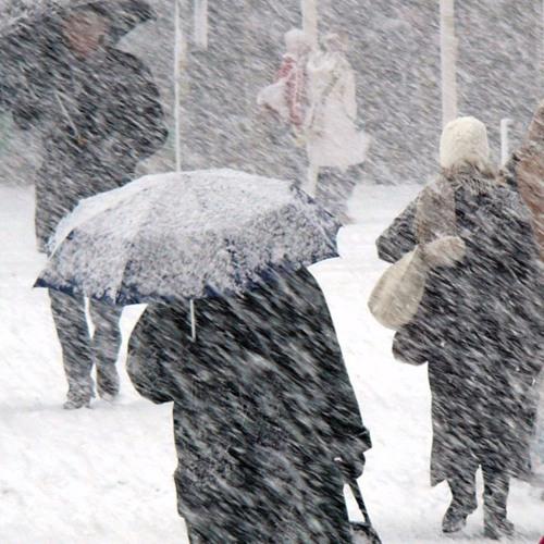 The Snow Day Demos