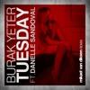 Burak Yeter feat. Danelle Sandoval - Tuesday (Mikael van Dikeen Remix)
