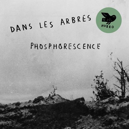 Dans les Arbres: Sciure - taken from the album Phosphoresence