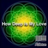 Ableton Live Deep House Template - How Deep Is My Love By Blood&Sand