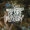 Manufactured desire: and our pursuit of pleasure