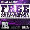 FREE Anniversary Collection Vol. 3 | 7.8 GB of the Best Future Bass, Trap & EDM Kits & Samples!