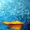 Rain Room 02.15.2017 Sleep, Meditation, Storm