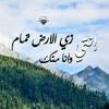 Download يا وردتي Mp3