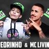MC Pedrinho & MC Livinho - Oque Que Essa Garota Fez Comigo ( Música Nova )