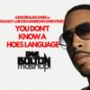 Ludacris Jax Jones MANDY  Booka Shade (WOLSH) - You Don't Know A Hoes Language (Dave Bolton)