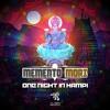 ONE NIGHT IN HAMPI( ALIEN RECORDS FREEDOWNLOAD!)