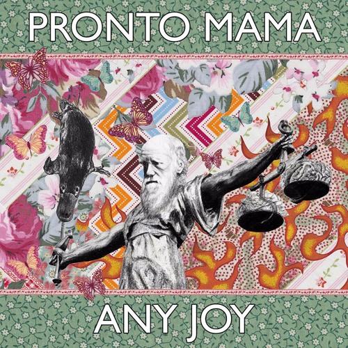 Any Joy
