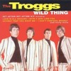 The Troggs - Wild Thing (Guitar Cover)