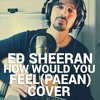 Ed Sheeran - How Would You Feel (Paean) Cover [WITH VIDEO]