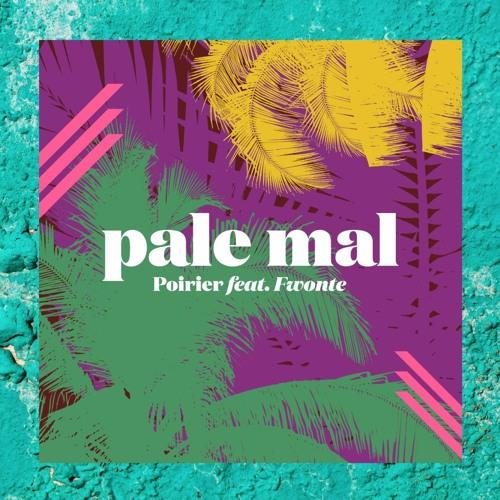 Pale Mal feat. Fwonte (promo minimix with remixes)