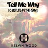 Hitchy X Kelvin Wood - Tell Me Why (Castles In The Sky)FULL TRACK CLICK FREE DOWNLOAD mp3