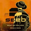Seeb - What Do You Love (Johan E ft. Roransu Remix)