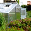 How to choose a greenhouse