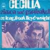 So Long, Frank Lloyd Wright (guitar by peacejoytown)