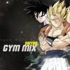 Dragon Ball Z - Saiyan Gym Mix