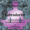 Open Doors HypnoMeditations - Labrodorite Introduction