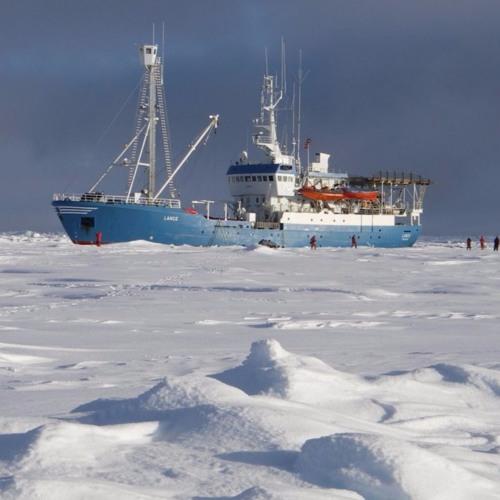 Arctic Reflections