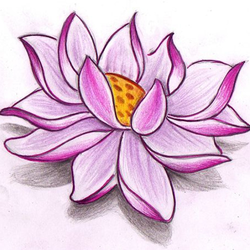 Lotus Flower Bomb Wale Ft Miguel Cover By Mike Mike Yuan