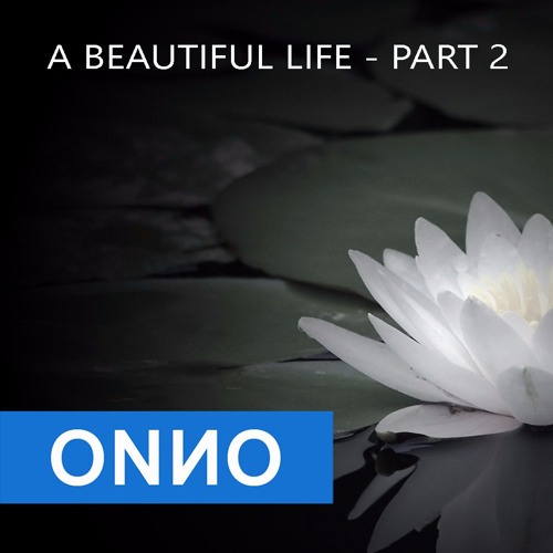 Onno Boomstra - A beautiful Life - PART 2