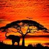 Sunset in motherland Week 3 part 2:Guest mix The Stranger Ke