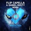 Flip Capella & Daniel Rosty - Noma  (Flip Capella Remix)