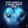 Flip Capella & Daniel Rosty - Noma