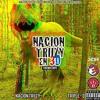 06. Nacion Triizy en 3D - Karate kid (ft. Rxmex Stunnv)