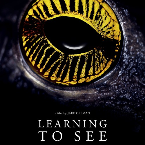 BSDFF17- Learning to See: the World of Insects