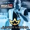 JrVianna RepNovo Ao Vivo Em Alto - PI 15.01.17 4 Musica Novas - #JuninhoMix
