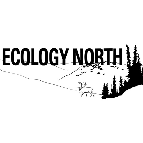 Ecology North Podcast - Pallet Salvaging Episode