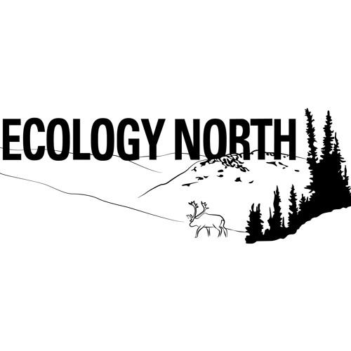 Ecology North Podcast - Fishing Episode
