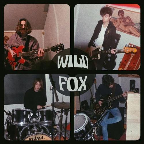 Wild Fox - Mister Brain