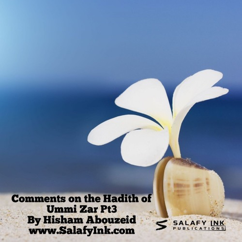 Comments on the Hadith of Ummi Zar Pt3 By Hisham Abouzeid