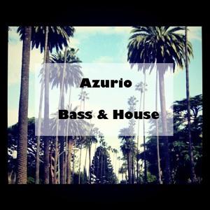 azurio bass house 7 2017 02 23. Black Bedroom Furniture Sets. Home Design Ideas