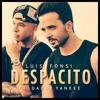 Luis Fonsi - Despacito Ft. Daddy Yankee (Dj Ham Bootleg Remix)