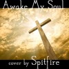 Awake My Soul - Chris Tomlin (guitar)