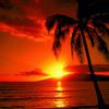 Free Download Aracely's La Noche De Alegria Mix Mp3