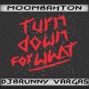 Turn Down for What DJ Snake Remix  Moombahton DjBrunny Vargas.flac