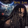 Ok, I'm Reloaded - Book Of Young Lion