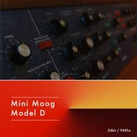 Hotwire moog collection - High Rise Funk