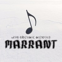 White Electronic Orchestra - Marrant