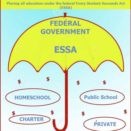 School Choice, ESAs, ESSA- It is all part of a system of control - with Lynne Taylor